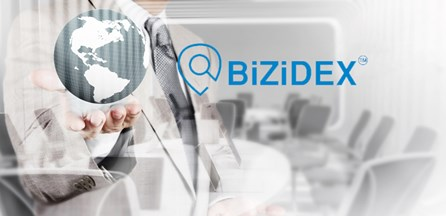 BiZiDEX: The Ultimate Online Marketing Solution for Businesses